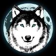 Luna Wolf Studios